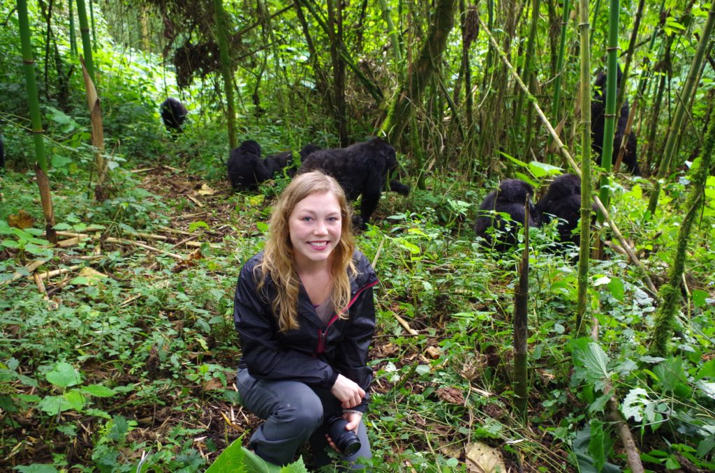 Mountain Gorillas in Rwanda 2014